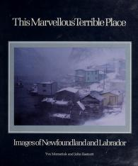 Cover of: This marvellous terrible place | Yva Momatiuk