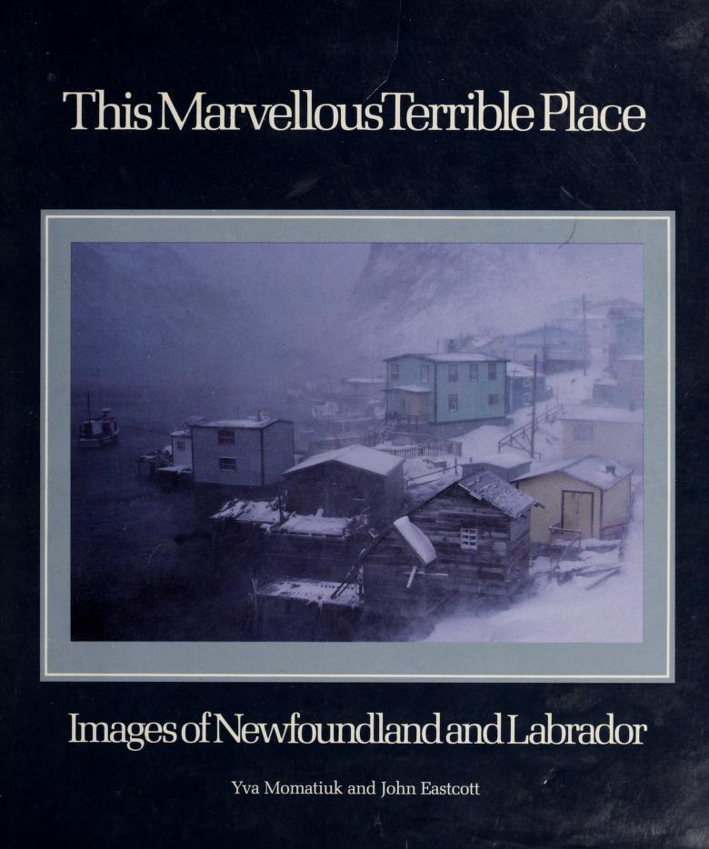 This marvellous terrible place by Yva Momatiuk
